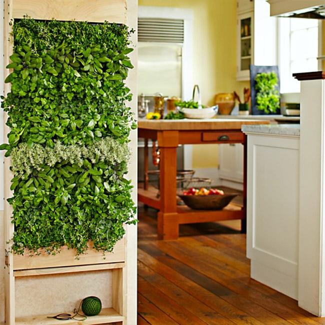 diseño de espacios verdes creatividad