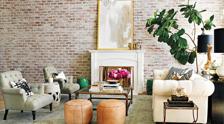 plantas para el diseño de interior ficus