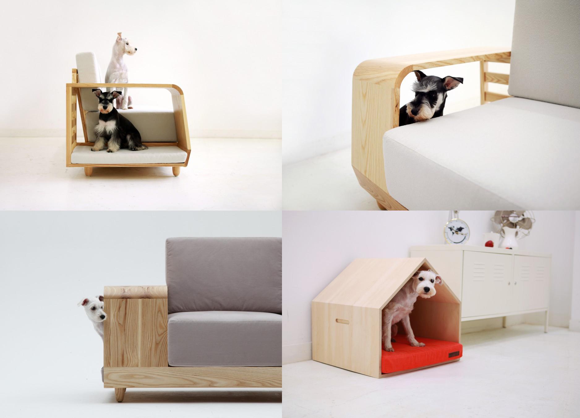 diseño de interior adaptado a tu mascota q